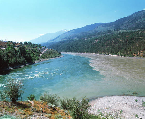 Thompson River Photograph - River Confluence by Martin Bond/science Photo Library