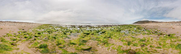 Ventura Photograph - River Delta And Wetlands At Low Tide by Panoramic Images