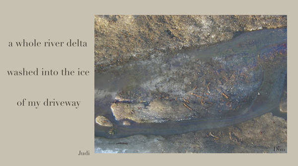 Digital Art - River Delta Haiga by Judi and Don Hall