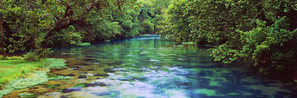 Missouri Ozarks Photograph - River Flowing Through A Forest, Big by Panoramic Images