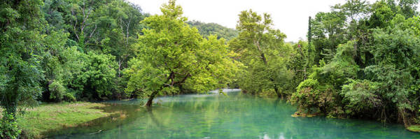 Missouri Ozarks Photograph - River Flowing Through A Forest, Ozark by Panoramic Images
