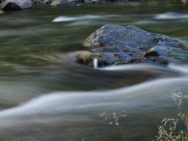 Photograph - Trout Stream 005 by Philip Rispin