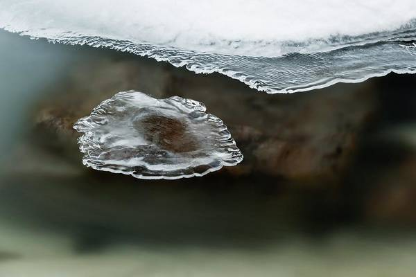 Forming Wall Art - Photograph - River Ice Forming by Jeremy Walker