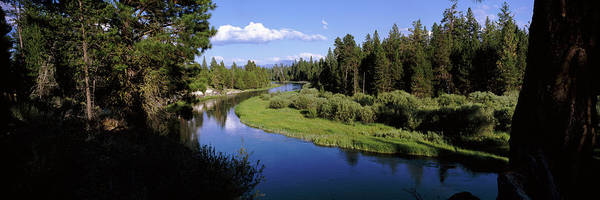 Deschutes River Photograph - River In A Forest, Don Mcgregor by Panoramic Images