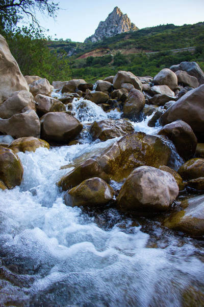 Chefchaouen Wall Art - Photograph - River In Talembote National Park by Pablo Benedito