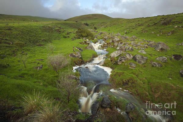 Photograph - River In Waimea Hills by Charmian Vistaunet