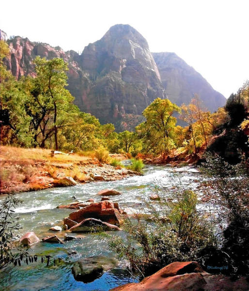 Photograph - River In Zion National Park by Duane McCullough