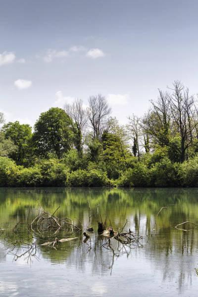 Photograph - River Landscape by Pier Giorgio Mariani