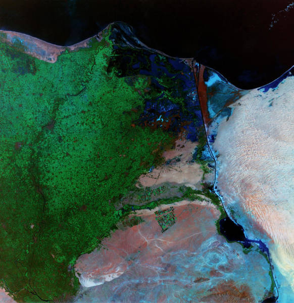 River Delta Photograph - River Nile Delta And Suez Canal by Mda Information Systems/science Photo Library