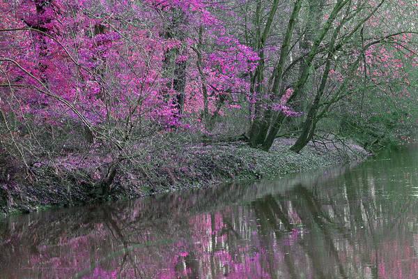 River Of Pastel Art Print