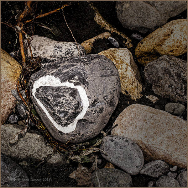 Photograph - River Rock by Fred Denner