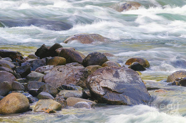 Alouette Wall Art - Photograph - River Rocks by Sharon Talson