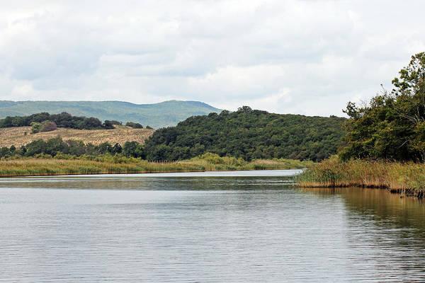 Photograph - River Ropotamo by Tony Murtagh