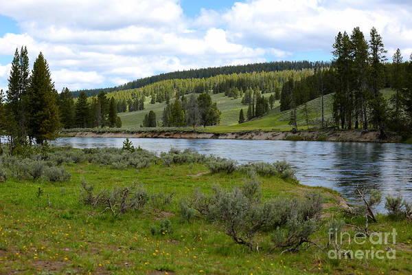 Photograph - River Through Yellowstone by Carol Groenen