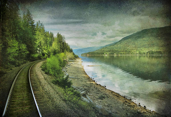 Foreshore Photograph - River Track by Kym Clarke