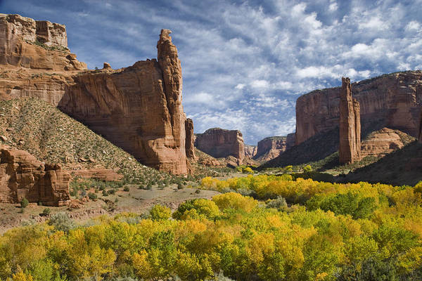 Spider Rock Photograph - River Valley And Spider Rock Canyon De by Tom Vezo