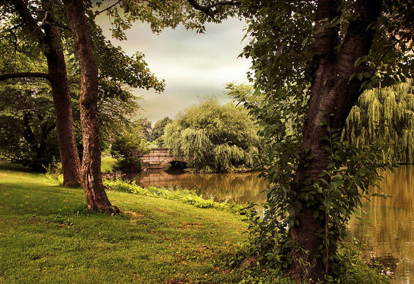 Photograph - River View by Jessica Jenney