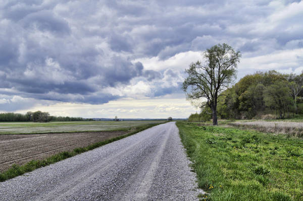 Photograph - Riverbottom Road by Cricket Hackmann