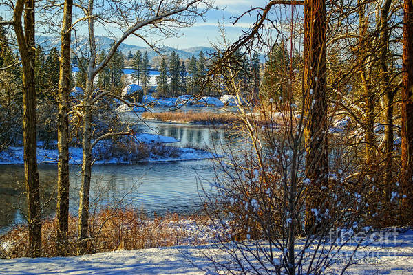 Photograph - Riverview II by Beve Brown-Clark Photography