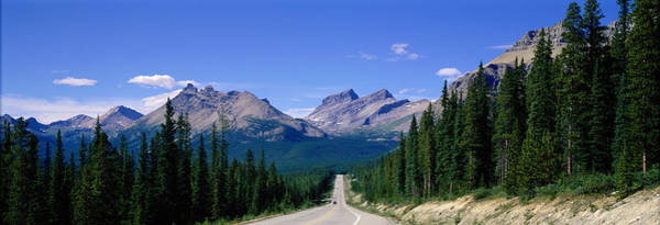Thoroughfare Photograph - Road In Canadian Rockies, Alberta by Panoramic Images