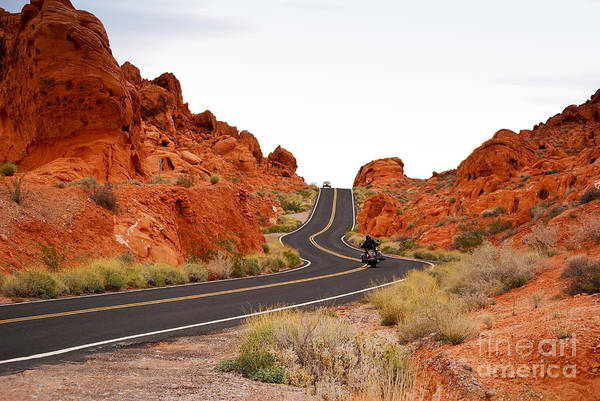 Photograph - Road In Valley Of Fire In Nevada by Les Palenik