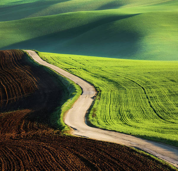 Wall Art - Photograph - Road by Krzysztof Browko