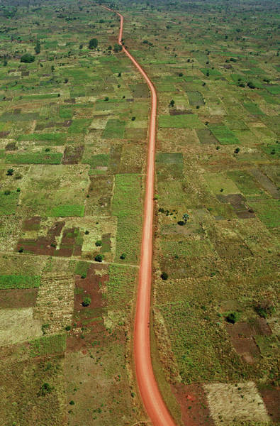 Uganda Wall Art - Photograph - Road by Mauro Fermariello/science Photo Library