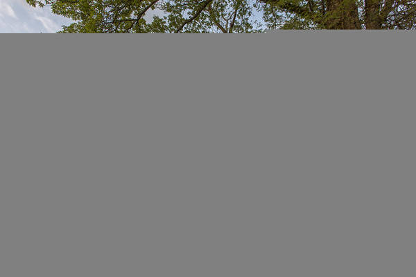Wall Art - Photograph - Road Not Traveled II by Jon Glaser
