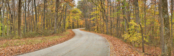 Brown County State Park Photograph - Road Passing Through A Forest, Brown by Panoramic Images