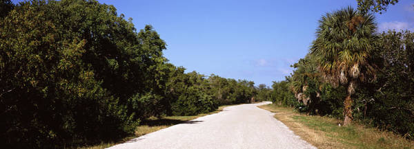 Ding Photograph - Road Passing Through Ding Darling by Panoramic Images