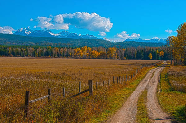 Photograph - Road To Glacier by Brenda Jacobs