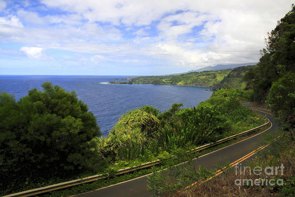 Photograph - Road To Hana by Richard Lynch