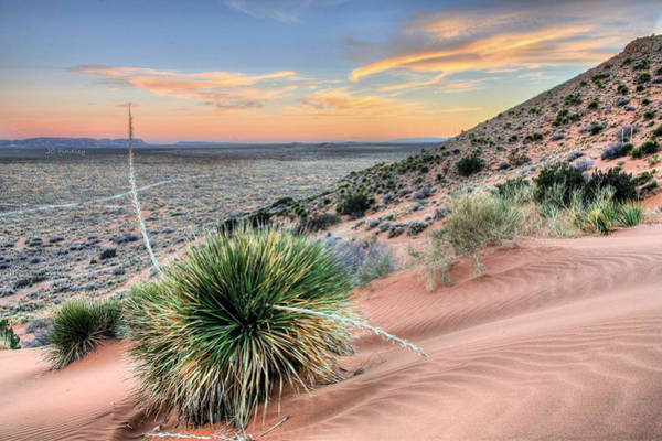 Photograph - Road To Mexico by JC Findley