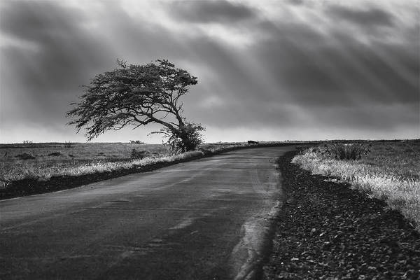 Wall Art - Photograph - Road To Nowhere by Eduard Moldoveanu