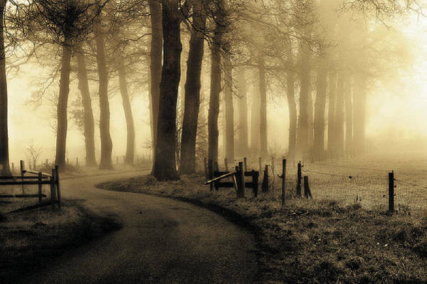 Fences Wall Art - Photograph - Road To Nowhere... by Petra Oldeman