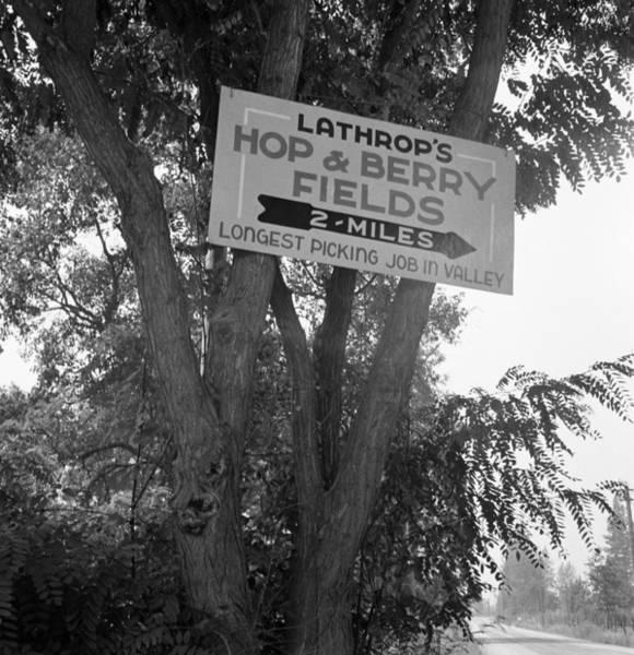 Wall Art - Photograph - Roadside Sign, 1939 by Granger