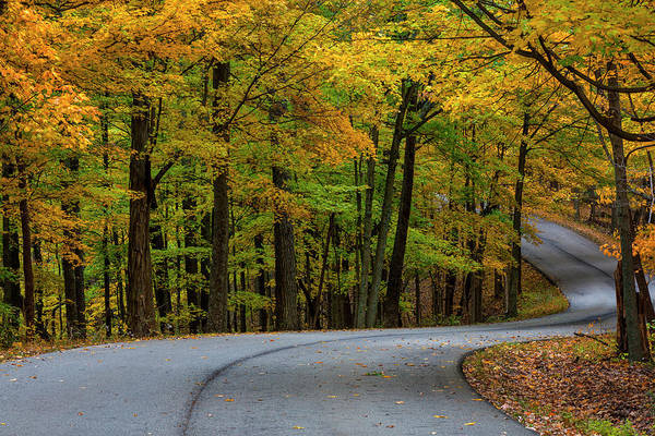 Brown County State Park Photograph - Roadway In Autumn In Brown County State by Chuck Haney