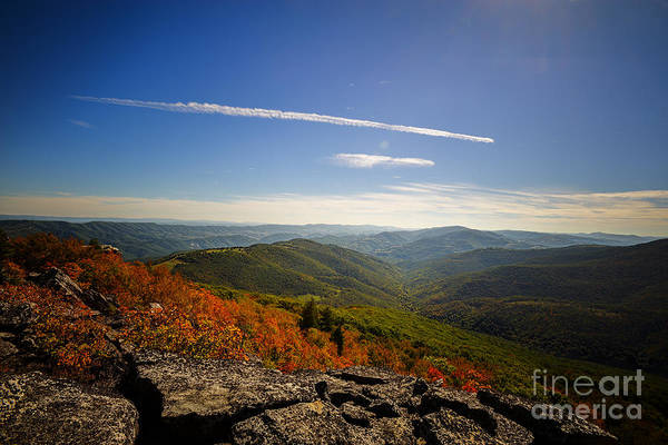 Photograph - Roaring Plains Of Dolly Sods Toward Smith Mountain by Dan Friend