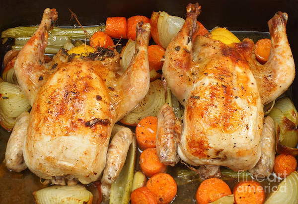 Photograph - Roasting Chickens Contemporary Style by Paul Cowan