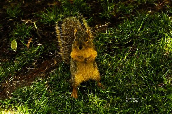 Digital Art - Robbie The Squirrel -0030 - F by James Ahn