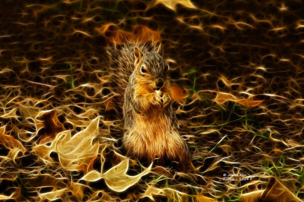 Robbie Digital Art - Robbie The Squirrel -1554 F by James Ahn