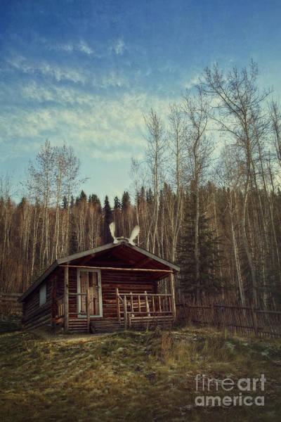 Yukon Territory Wall Art - Photograph - Robert Service Cabin by Priska Wettstein