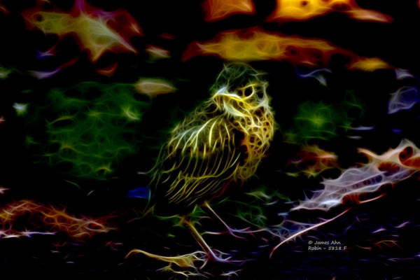 Digital Art - Robin - 5818 F by James Ahn