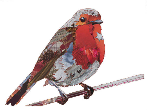 Stitch Painting - Robin Red by MGL Meiklejohn Graphics Licensing