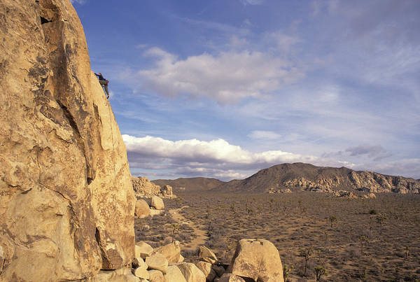 Wall Art - Photograph - Rock Climber In Joshua Tree National by Rich Wheater