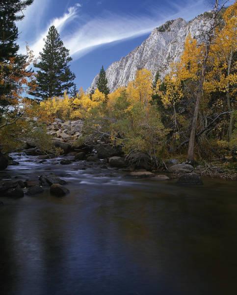 Rock Creek Canyon Gold Art Print