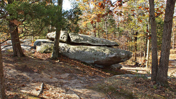 Photograph - Rock Formation Amid The Trees by Sandy Keeton