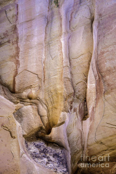 Photograph - Rock Formation by David Waldrop