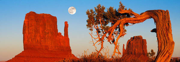 The Mitten Photograph - Rock Formations, Monument Valley Tribal by Panoramic Images