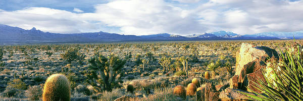San Bernardino Photograph - Rock Formations On A Landscape, Mojave by Panoramic Images